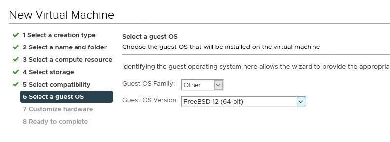 Select a guest OS